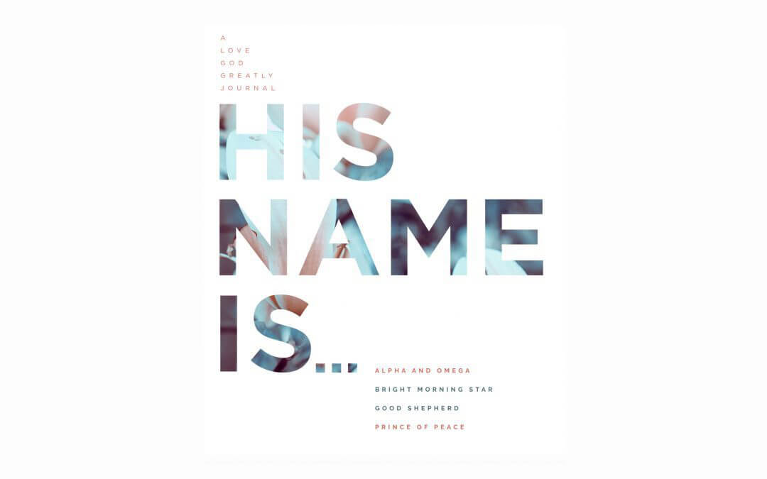 His Name Is…Our 2017 Christmas Study
