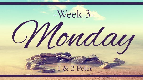 Week 3 – Help For The Hurting Wife