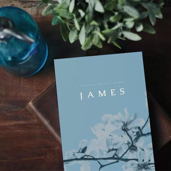 James Bible Study - Free Online Bible Study from Love God
